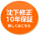 icon10year